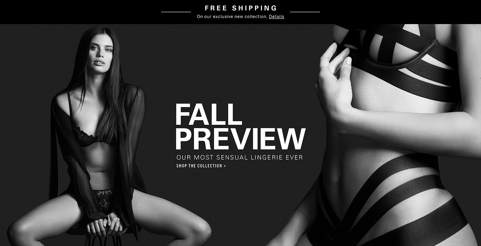 Fall Preview. Our most sensual lingerie ever. Shop the Collection